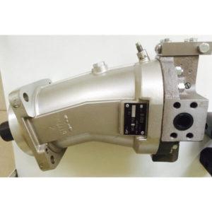Гидромотор 303.112.501